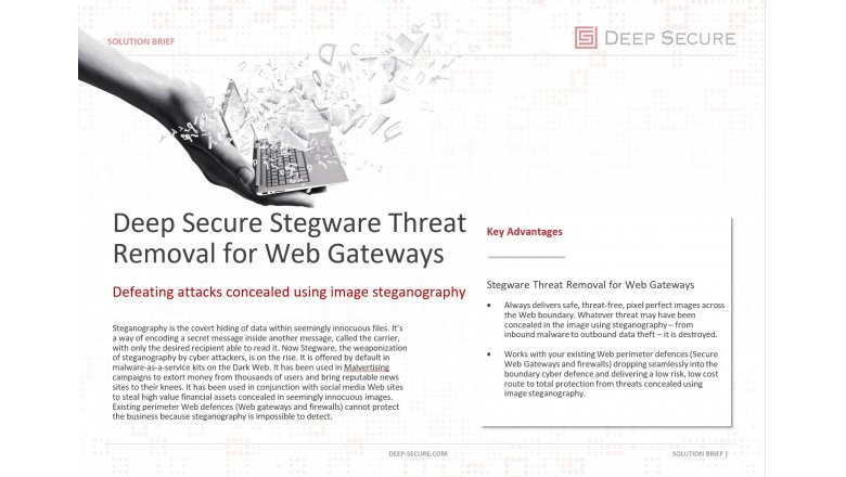 Stegware Threat Removal for Web Gateways