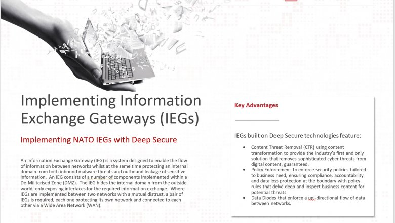 Implementing NATO Information Exchange Gateways (IEGs)